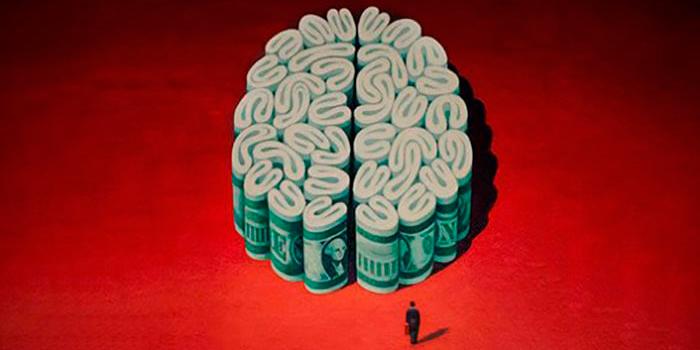 Cérebro de Dinheiro