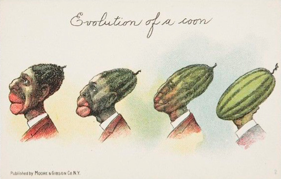 Coon Watermelon