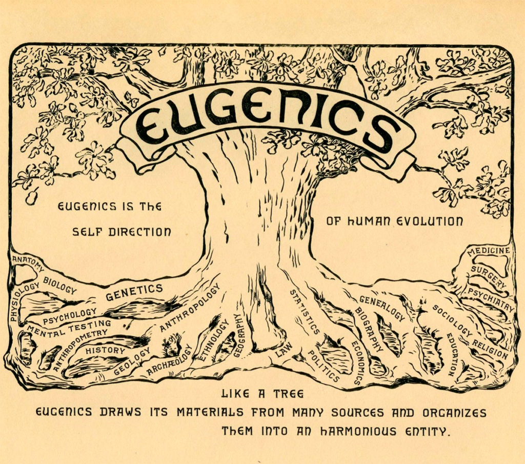 Eugenic Tree
